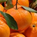 Naranjas maquina exprimidora 29 kg.