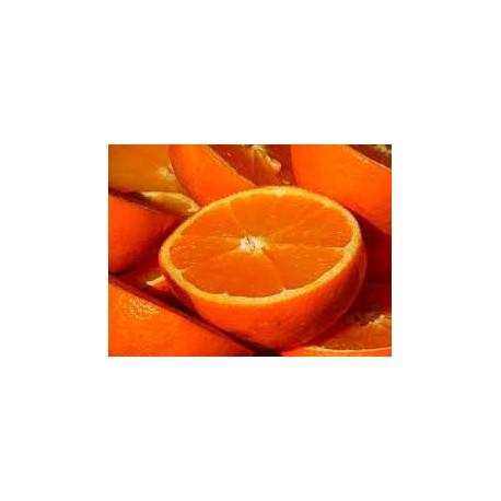 Naranjas para Zumo especial. Caja de 20 Kg.