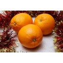 Naranjas de Mesa 20 kg.