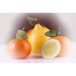 Combinado 7.5 kg. de zumo y 7.5 kg. de mandarinas.