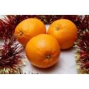 Naranjas de Mesa 15 kg.