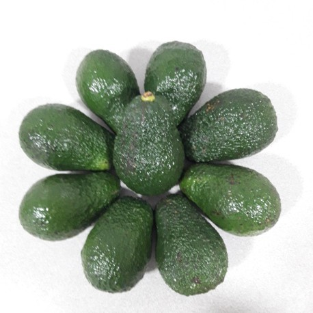 AGUACATES HASS 1 KG.