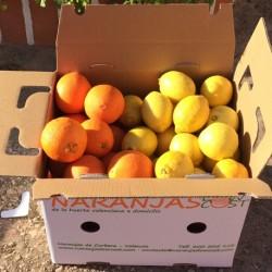 NARANJAS PARA ZUMO DE12kg + 3kg de limones